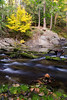 Whatcom Falls Autumn Beauty