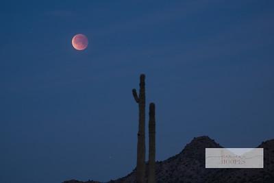 moon-3132-2
