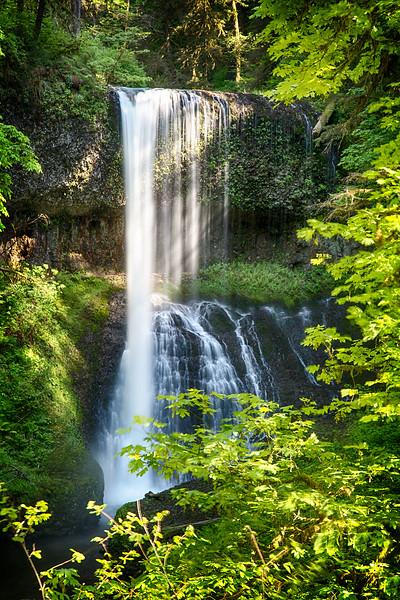 Oregon Waterfall (Silver Falls Park)