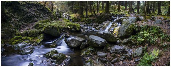 Poulanass River