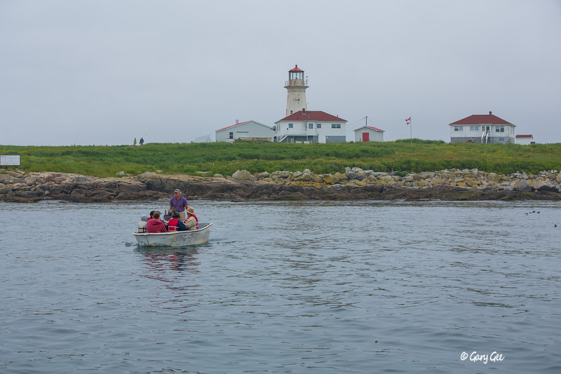 Machias Seal Island - the only way of accessing the island....by small boat. Andrew Patterson standing in the boat runs tours for the nesting shore-birds during the summer.