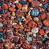 Shoreline Mosaic - #2