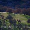 Two Tree Rock - Tehachapi, Ca USA