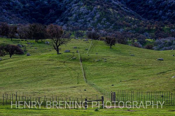 Split Trail - Tehachapi, Ca USA