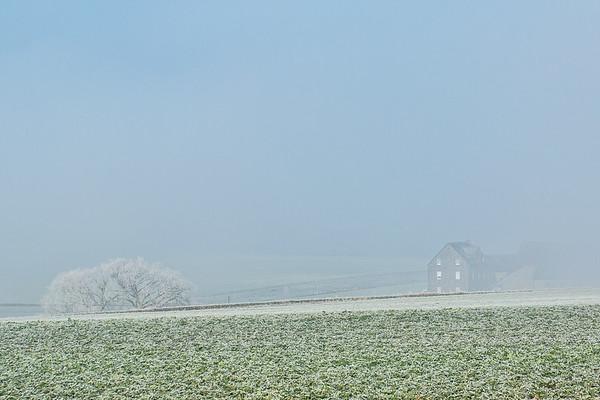 Nebelwanderung