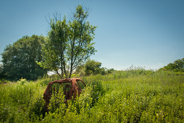 Abandoned Smart Car