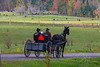 Amish Family in the Fall