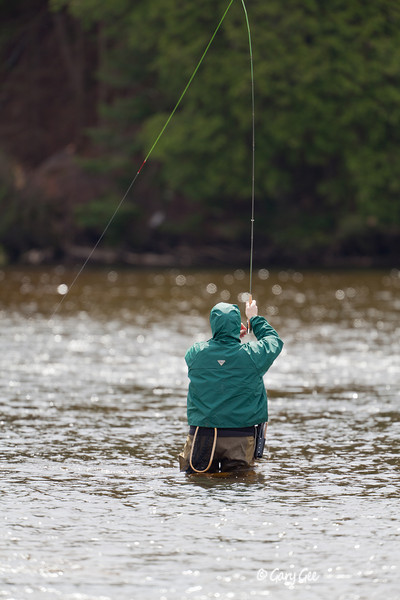 AuSable River - Fish on!