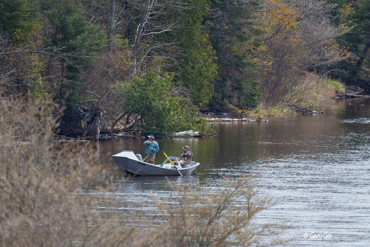 Au Sable River opening day 2012 - looks like a hook-up!