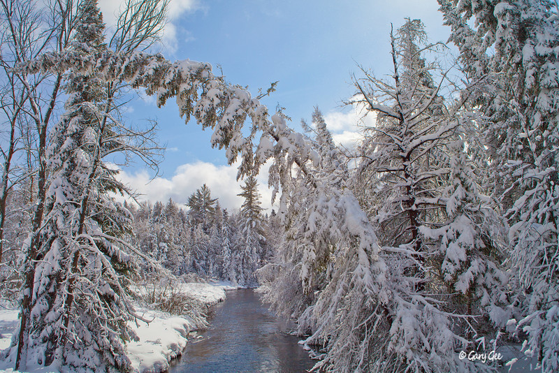 Au Sable River branch in winter