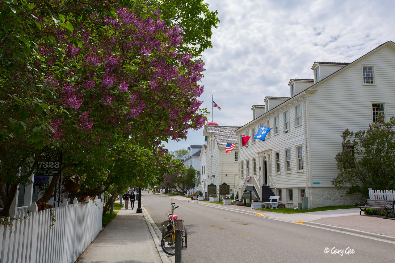 Streets of Mackinac Island with Lilacs in full bloom