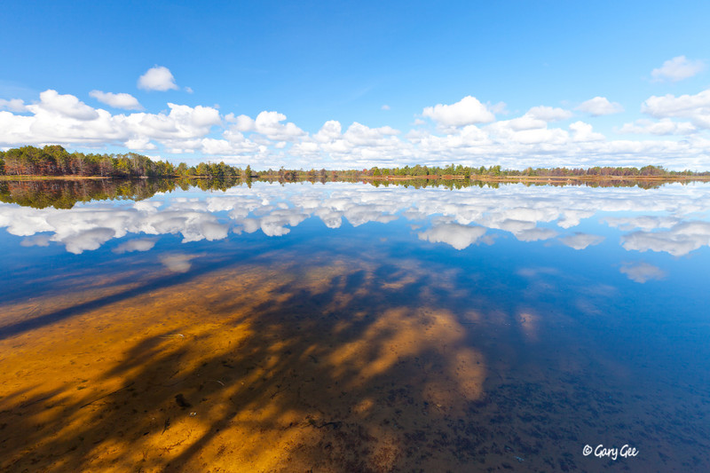 Seney Wildlife Refuge Reflection