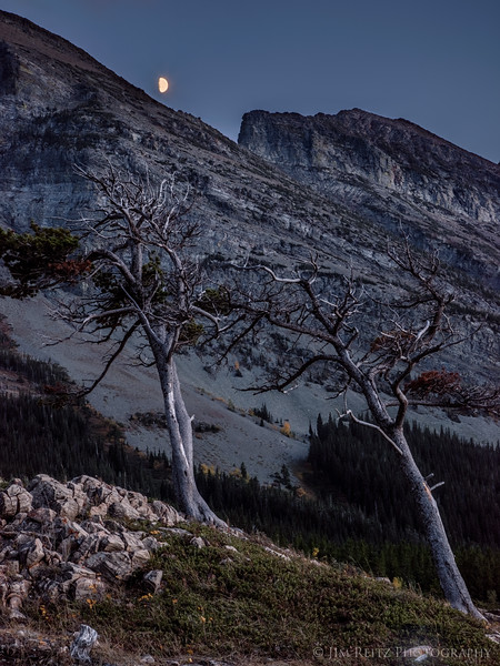 Many Glacier Moonrise