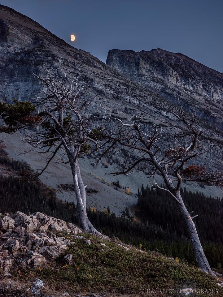 Many Glacier Moonrise