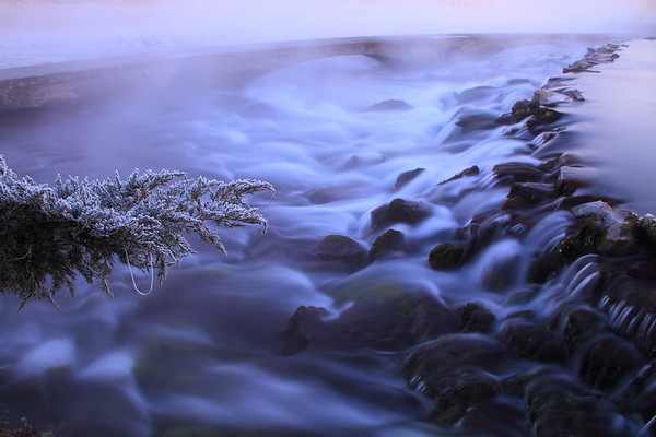 A Frosty Morning At Giant Springs State Park
