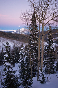 Full moon and Aspen trees from Elk Creek