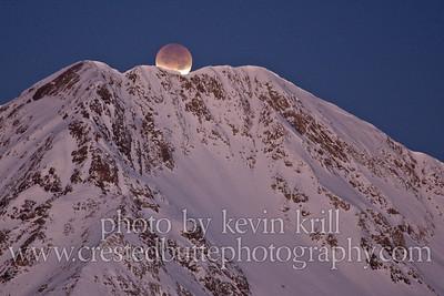 K_Krill_20111210-194