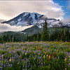 "<font color=""#FFFFFF"" size=""4"" face=""Verdana, Arial, Helvetica, sans-serif"">Heavenly Moment</font><br> Mt Rainier, Washington"