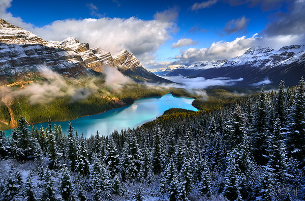 Fresh Snow Over Peyto Lake