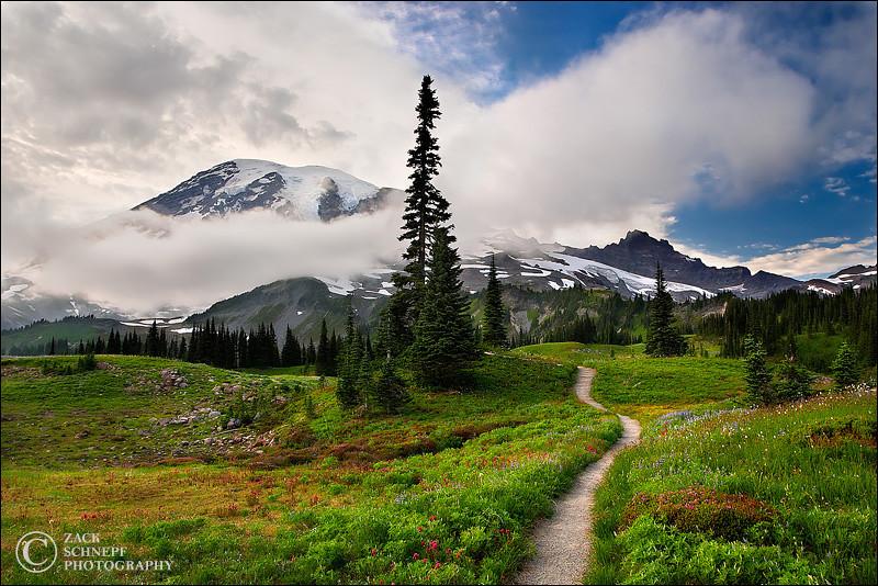 """<font color=""""#FFFFFF"""" size=""""4"""" face=""""Verdana, Arial, Helvetica, sans-serif"""">Trail to Rainier</font><br> Mt Rainier, Washington"""