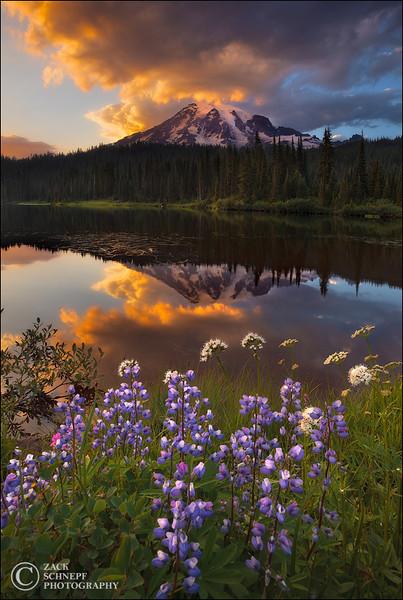 """<font color=""""#FFFFFF"""" size=""""4"""" face=""""Verdana, Arial, Helvetica, sans-serif"""">Reflection Lake Sunset</font><br> Mt Rainier, Washington"""