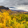 Fall Colors in Alaska