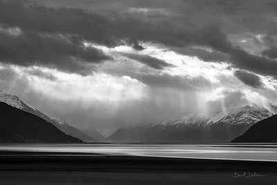 Turnagain Light