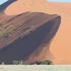 zwischen Sesriem und Sossusvlei, Namibia