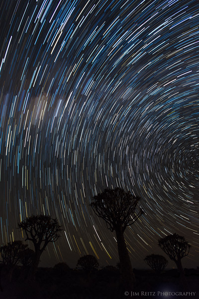 Long-exposure capture of star trails over the Quiver Tree forest in Namibia.