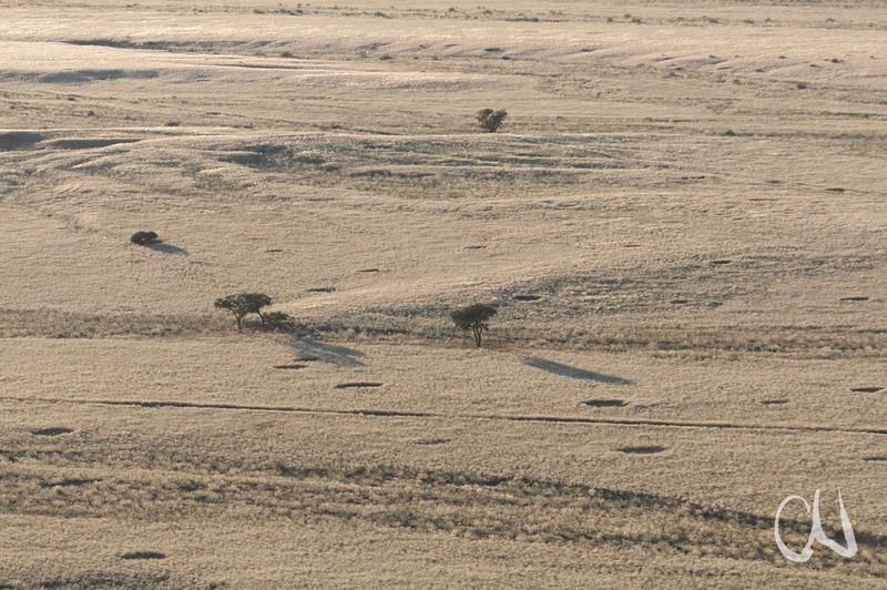 Blick von der Elim-Düne auf Grasland, nicht bewachsene Kreisflächen, Sesriem, Namibia