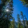 Bradley Lake Sunburst