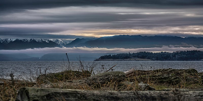 from Esquimalt Lagoon, Olympic Mountains Wa
