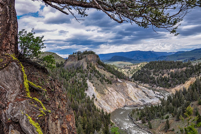 Bleached Cliffs, Yellow Stone National Park WY