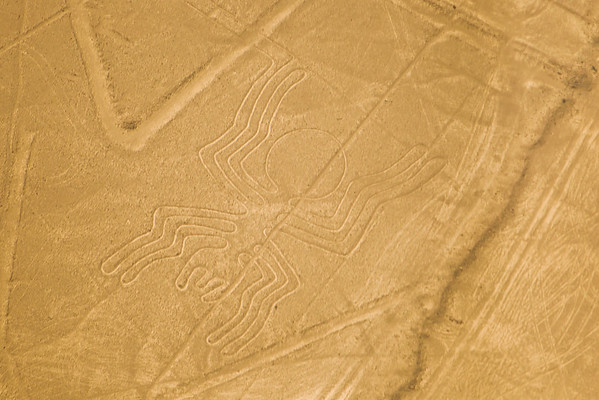 "Aerial view of the ""Spider"" at the mysterious Nazca lines in the pampa plateau desert in Peru."
