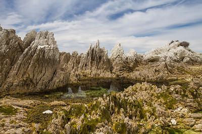 Limestone shoreline and rock pools - Kaikoura NZ