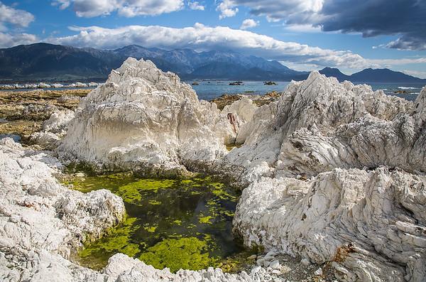 Limestone rock pool -   Kaikoura