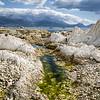 Kaikoura limestone shoreline.
