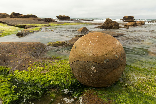Boulder on a coastal rock shelf