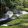 Mountain Stream,  Kahurangi National Park Westland