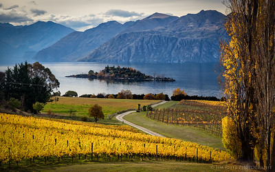 Rippon Vineyards, Lake Wanaka, New Zealand