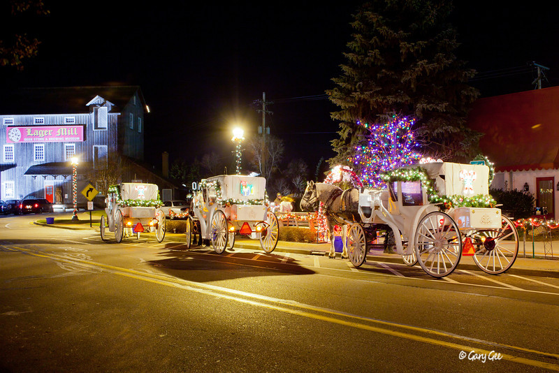 Horse Carriage rides in Frankenmuth, MI at Thanksgiving time