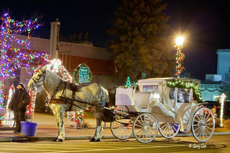Horse Carriage Frankenmuth, MI