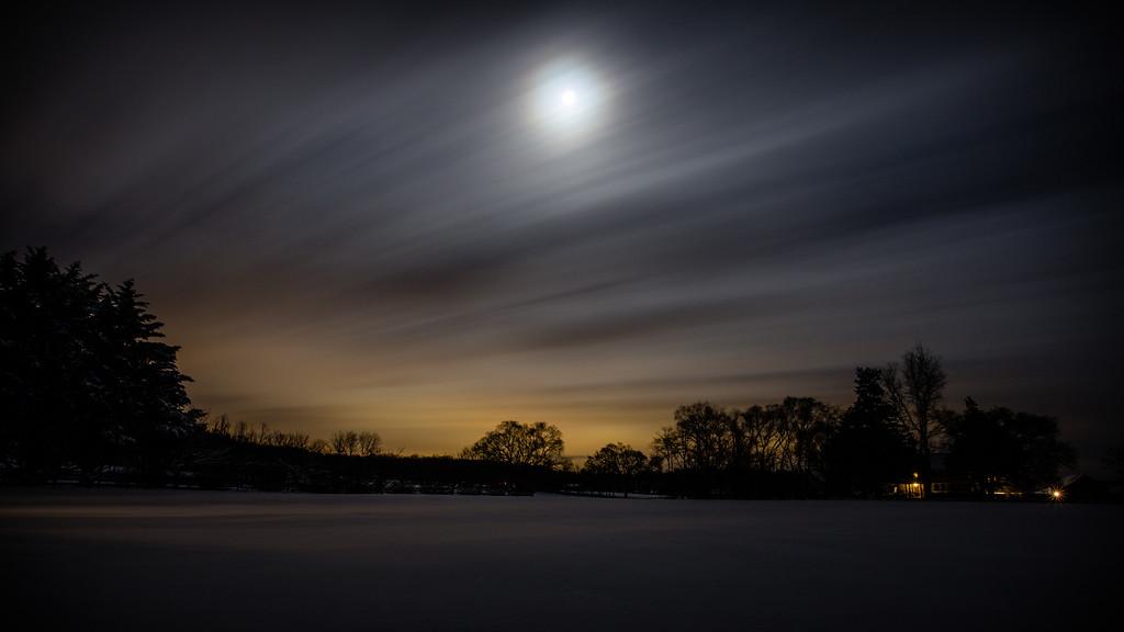 Windswept Moonlight