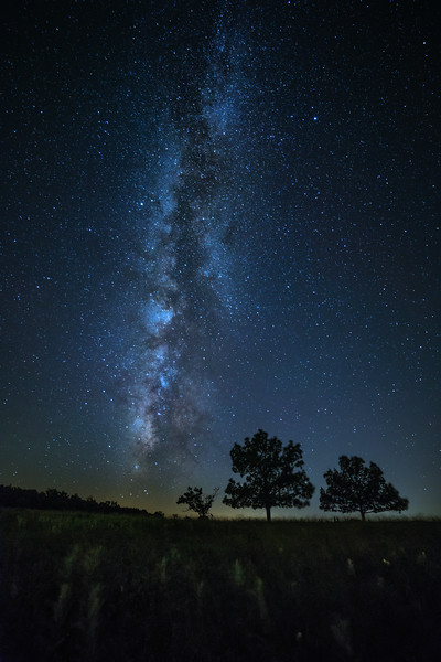 Big Meadows under a Starry Sky