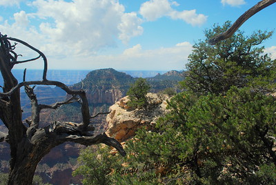 Grand Canyon-North Rim-10