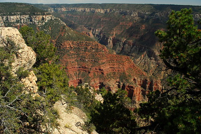 Grand Canyon-North Rim-17