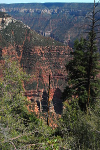 Grand Canyon-North Rim-6