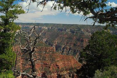 Grand Canyon-North Rim-13