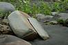 Brocken Rock<br /> Fourth Beach<br /> Olympic National Park
