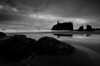 Ruby Beach black and white<br /> Olympic National Park